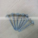 9BWG*2.5 Umbrella Head Box Construction Galvanized Roofing Coil Wire Nails Tacks With Washer