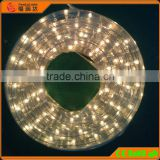 High brightness 2 wire round black light rope lights