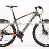 Professional MTB 29 Inch Carbon Fiber Mountain Bike