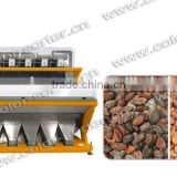 ZRWS high effective cocoa bean color sorter/processing machinery for cocoa bean processing line