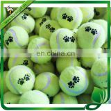 paw printed tennis ball