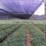 agricultural HDPE greenhouse sun shade sheeting cover