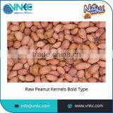 100% Pure and Natural Bold Type Raw Peanuts Kernel for Sale