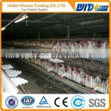 High quality design layer chicken cages layer chicken cage,battery cages laying hens(factory)