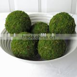 Foam core natural Marimo Moss Ball for decoration