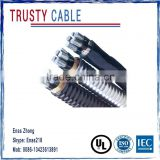 AAAC Cable (Aluminum Alloy MC Cable)