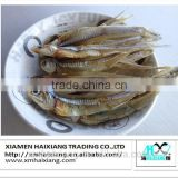 Dried Anchovy fish supplier