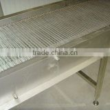 variable speed stainless steel conveyor