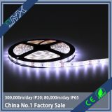 Good price 2835 led strips 60 leds/m 4.8w/m low power consumption with  CE&RoHS&FCC