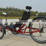 Cheap Folding Recumbent Trike With Suspension