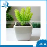potted artificial cactus/succulent for home decorations / garden decorations