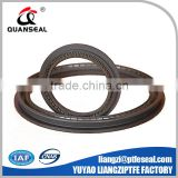 Different type Energized Spring Energized PTFE Seals