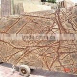 Antique Forest Brown Marble Slabs