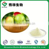 Wholesale Green Apple Powder Instant Apple Tea Powder