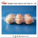 Food Grade Plastic Six Count Apple Container