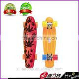 Mini cruiser plastic skateboard with water transfer printing