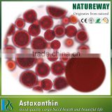 High Quality 100% Pure Haematococcus Pluvialis Extract powder natural astaxanthin powder supplier price