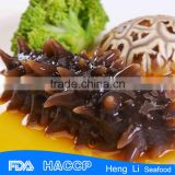 HL011Nutritious sell sea cucumber species