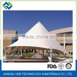 Hot sale permanent ptfe architecture membrane