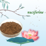 manufacturer supply nuciferine lotus leaf extract powder