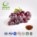organic freeze dried fruit juice powder