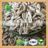China high quality confectionary and bakery hulled sunflower seeds kernels
