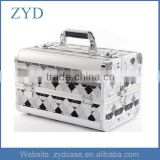 Aluminum Carrying Case For Nail/ Nail Polish Organizer Case ZYD-HZ101005