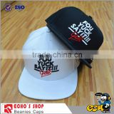 Custom Embroidery Fashion Baseball Cap, Cotton Sports Hat                                                                         Quality Choice