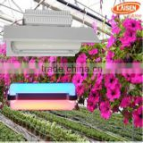 40w new product jiangsu red blue color full spectrum plant light