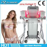 laser slimmming equipment for weight loss / PZ809A PZ Laser slimming machine / zerona lipo laser slimming with 12 laser paddles
