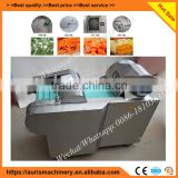 Multifunction automatic apple slicer machine