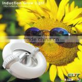 indoor garden grow light item type high power induction plant t5 grow light