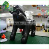 Advertising Decorate Animal Inflatable Horse For Outdoor Black Horse