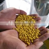 Plastic Film Recycling Machine/Pelletizer Machine/Granulator                                                                         Quality Choice