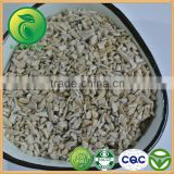 Top Crop Broken Sunflower Kernels Best Selling