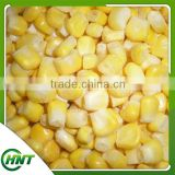 Frozen Vegetables Iqf Sweet Corn Kernels From China
