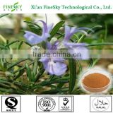 China Sourced Rosemary Extract Suppliers,hot sale 2014,rosemary extract powder for weight loss