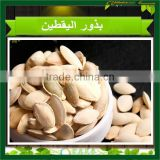 2015 new crop shine skin pumpkin seeds, pumpkin seeds in shell