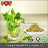 High quality Plant extract peppermint extract mint extract ,Herbal Mint Leaf Extract Powder