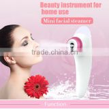 CE RoHS marked Mini face humidifier facial spray nano mist mini Facial steamer moisturizing and whitening skin
