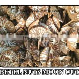 Areca catechu [Moon Cut]