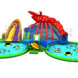 Wholesale price plastic water slide, cheap inflatable water slides, giant inflatable water slide