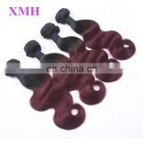 New ombre hair extension,two tone brazilian vrigin human ombre hair weaves