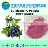 Top quality blueberry extract powder/blueberry juice powder
