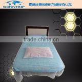 Disposable Bed Cover with Elastic Band Bed Sheet
