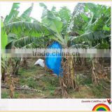 PE plastic Banana protection bag banana cover