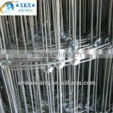 High tensile hot dipped galvanized Field Fence