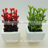 New model art ceramic potted plants
