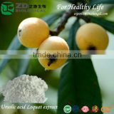 100% pure natural herbal Extract Ursolic acid solvent residue free Loquat extract for Antioxidant Cosmetics & personal care