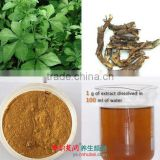 Natural pharmaceutical grade Siberian Ginseng root Extract powder